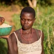 Stop à la faim qui affligent des 'millions' de personnes