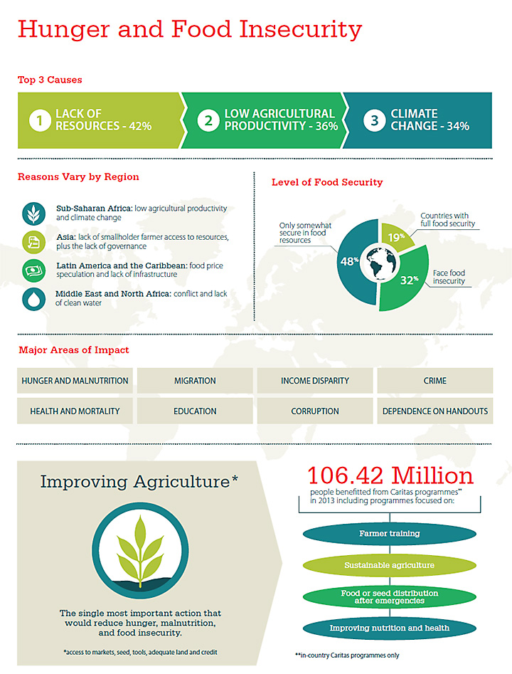 Hunger and food insecurity infographic